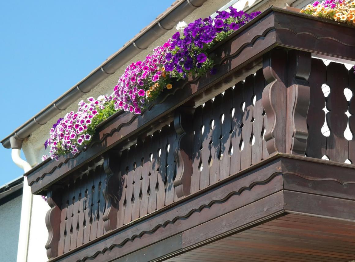 Jakie kwiaty nabalkon?