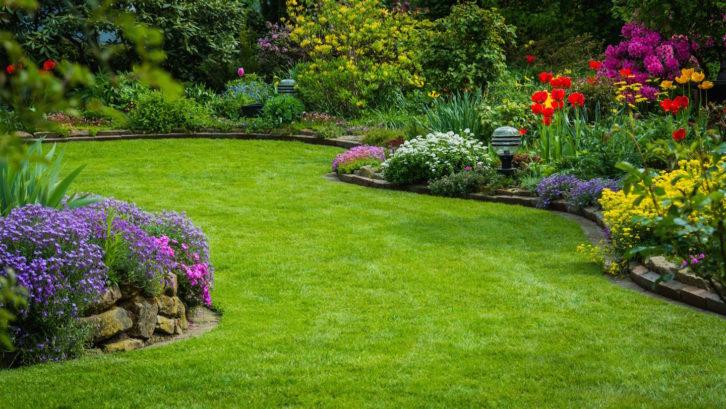 Trawa zrolki - idealny trawnik.