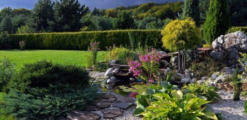 Oczko wodne – sposób naurozmaicenie ogrodu