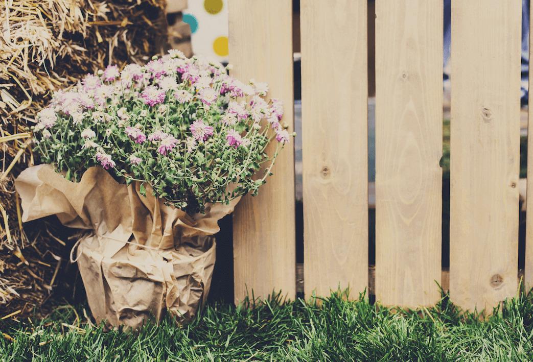 5 elementów, dzięki którymstworzysz wyjątkowy ogród