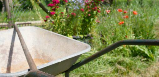 Jak dobrać odpowiednią glebogryzarkę doswojego ogrodu?