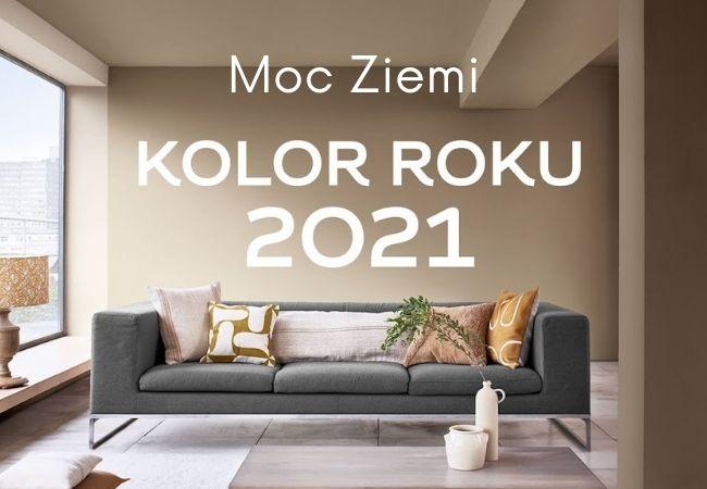 kolor roku 2021 moc ziemi