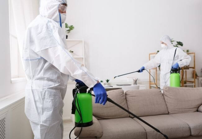 dezynfekcja mieszkania - kiedy należy ją wykonać